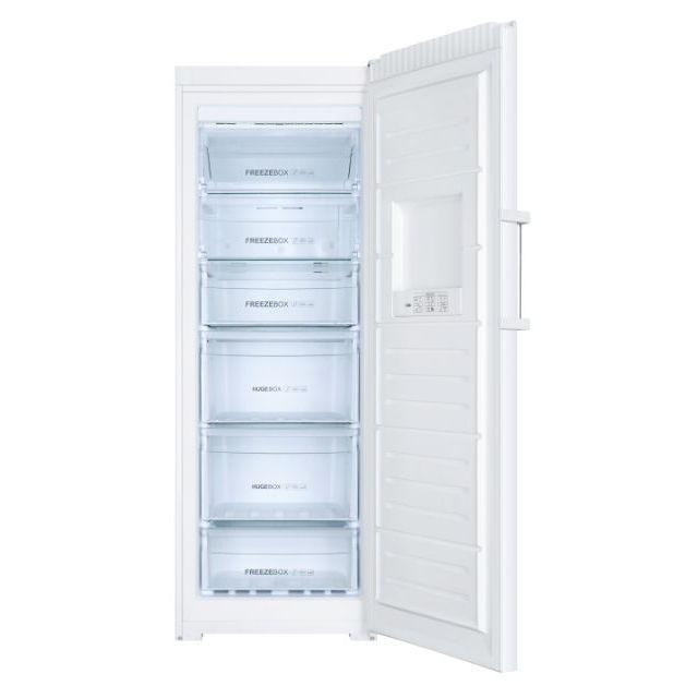 Congelatori verticali H2F-220WF